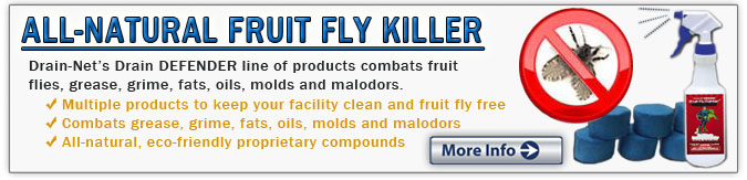 Fruit Fly Erradication drains restaurants