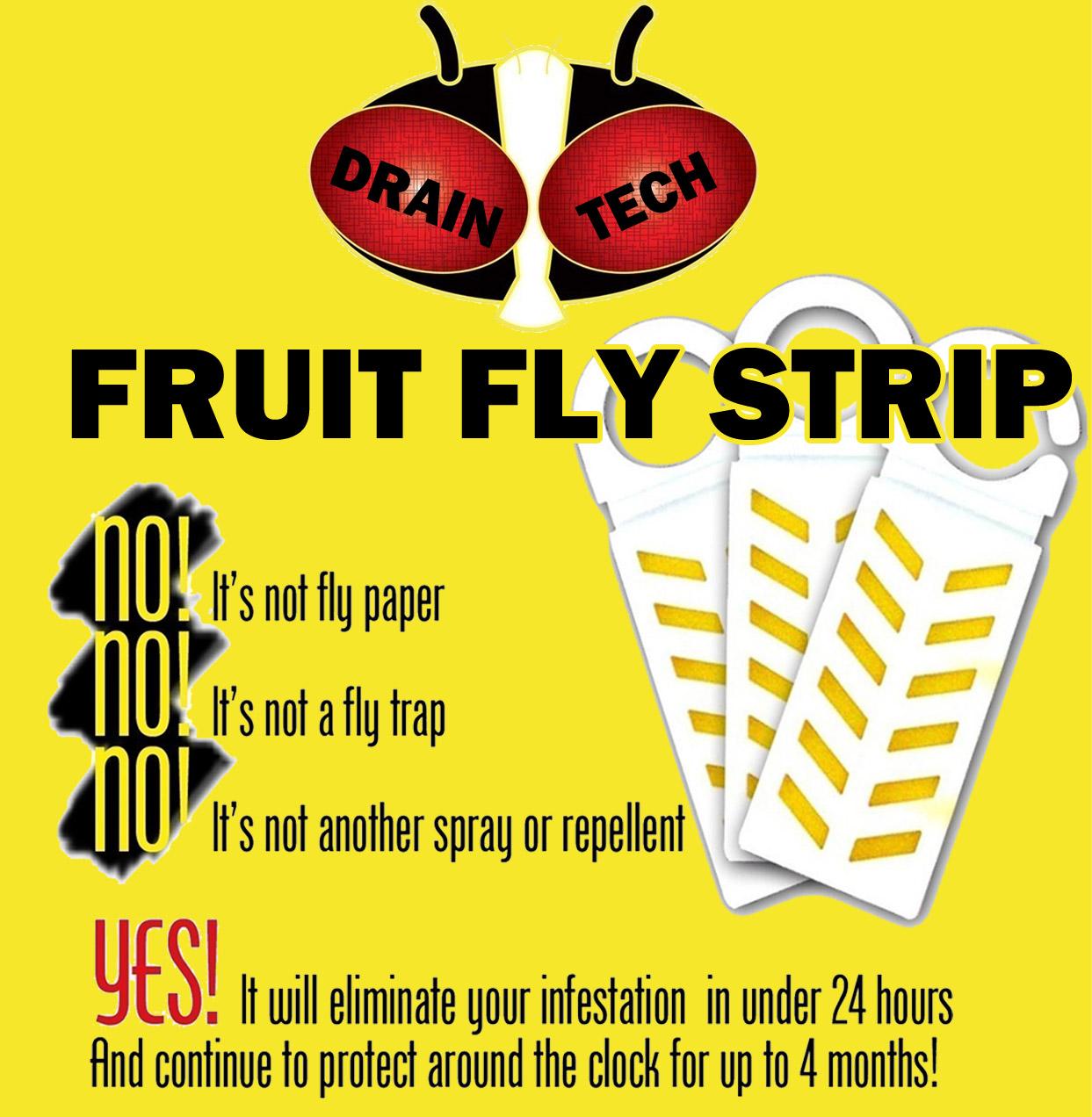 Fruit Fly Pro