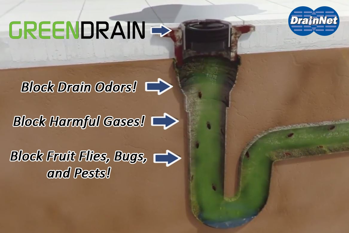 Prime Green Drain Floor Drain Trap Sealer Download Free Architecture Designs Crovemadebymaigaardcom