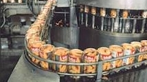 Food Processing Drain Solutions