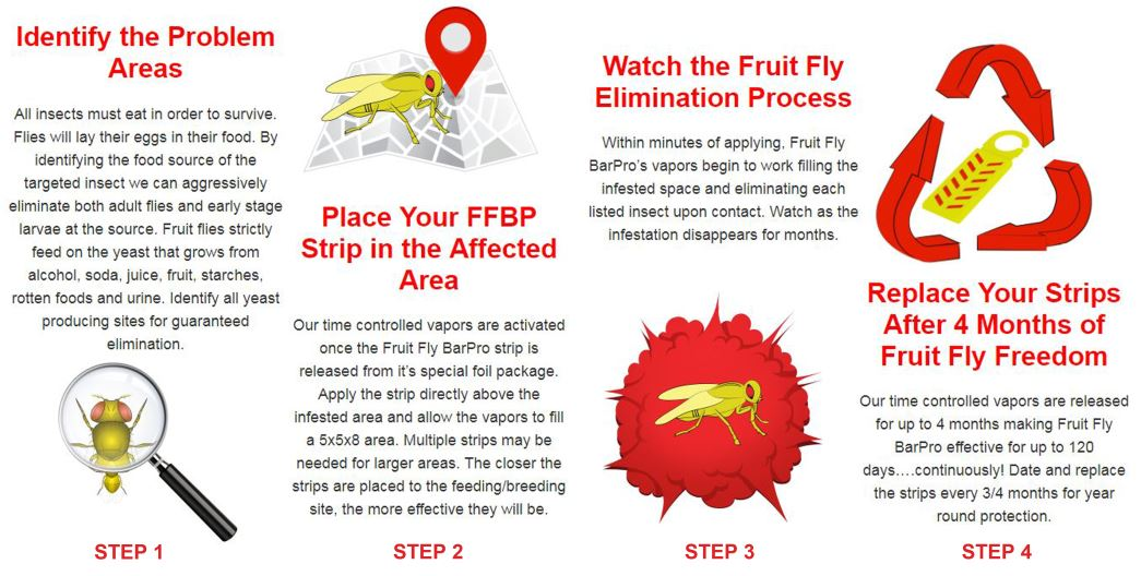 Fruit Fly BarPro FFBP Insecticide Vapor Strip - 10/Pack